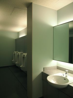toilet-FS2